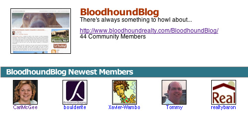 Bloodhound Blog MBL screen shot